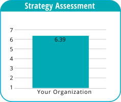 Pulse Check sample score: strategy assessment